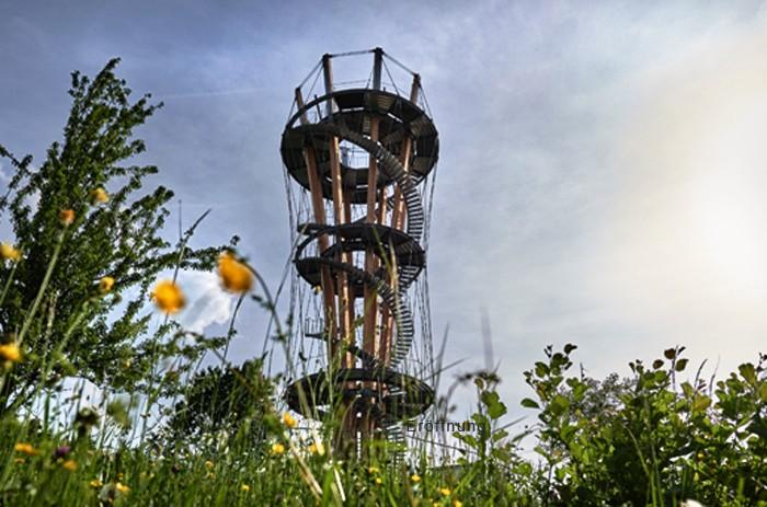 Blick auf den Schönbuchturm
